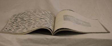 Book of Loba