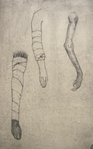 Humanimal. Arms