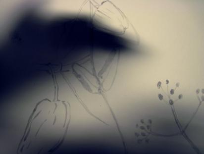 ombre d'une fille en fleur