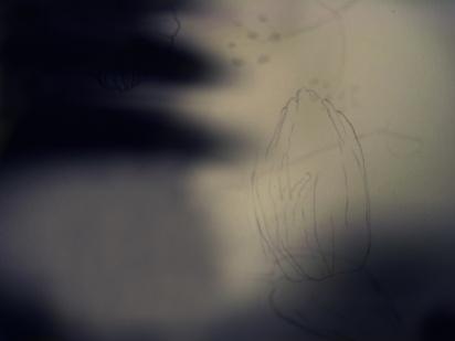 ombre d'une jeune fille en fleur