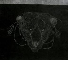 The Bear Kingdom. Reina Ursa